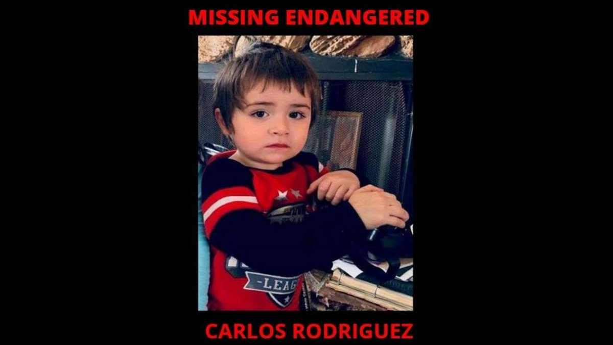Carlos Rodriguez, a 3-year-old Hispanic male, 3 feet tall, weighing approximately 30 pounds,...
