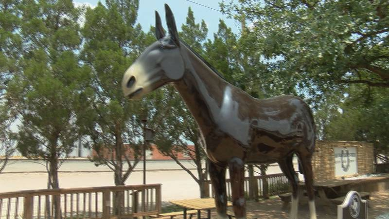 Muleshoe's Old Pete has been in the town since 1965.