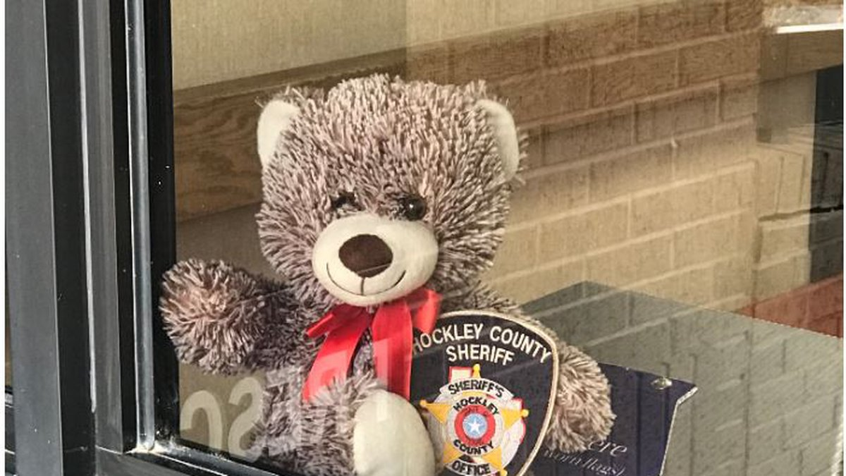The Hockley County Sheriff Ray Scifres spotted a bear in Levelland!