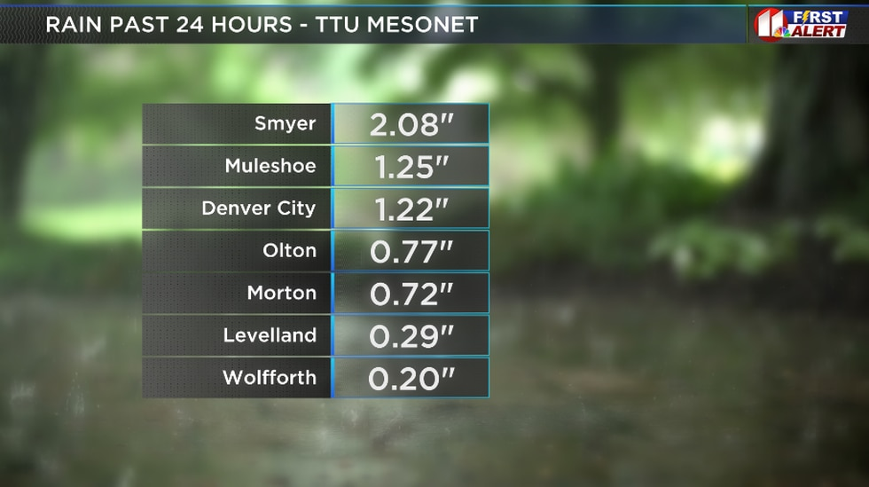 Rainfall totals from Saturday night and Sunday's storms