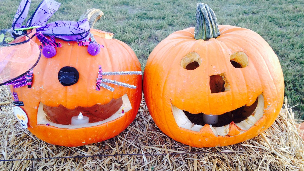 The City of Lubbock is asking for your carved pumpkin submissions for this year's Pumpkin Trail!
