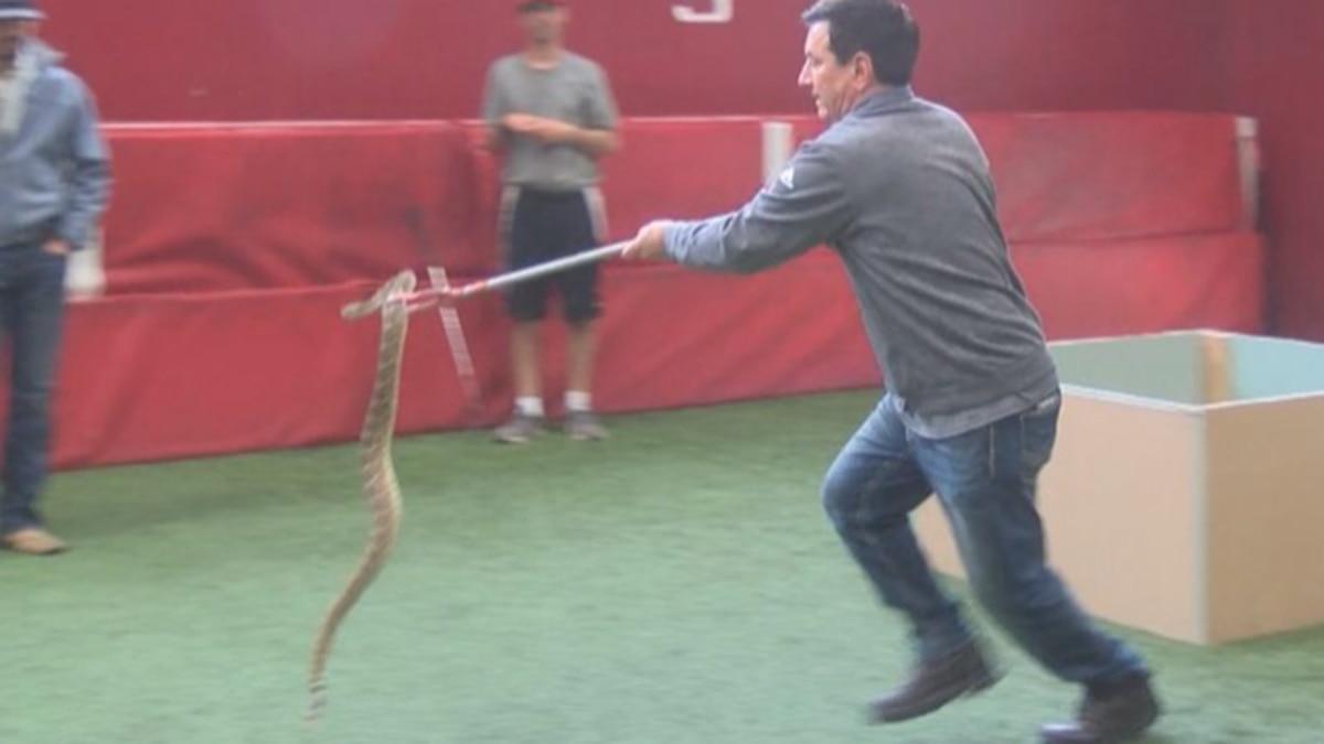 I Beat Pete: Rattlesnake Relay