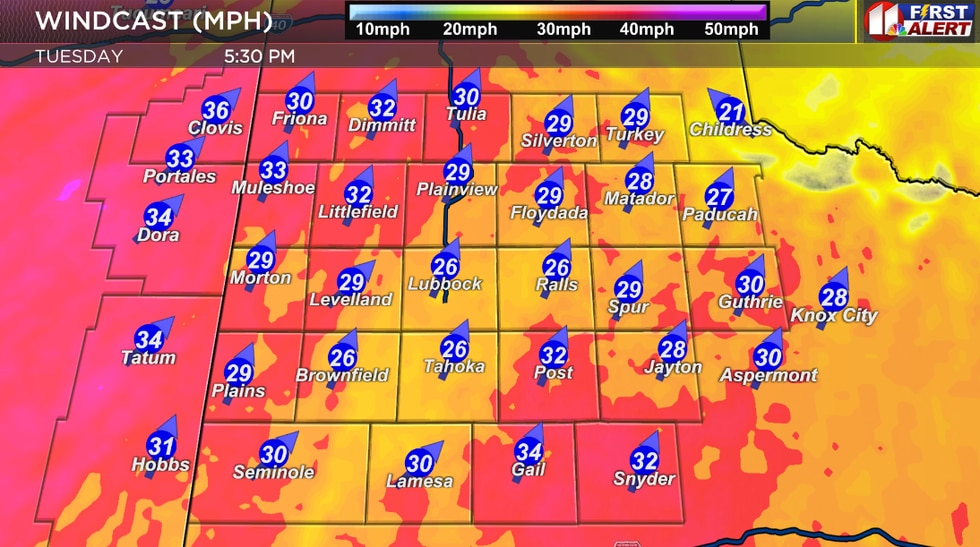 One moment in our windy afternoon. Sustained wind speeds of 20 to 30 mph with gusts of 50 to 55...