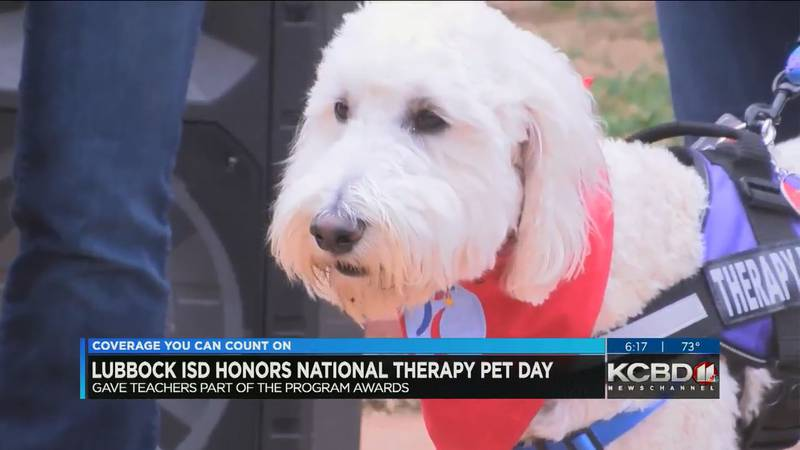 Lubbock ISD decided to celebrate National Animal Therapy Day by having teachers bring some of...